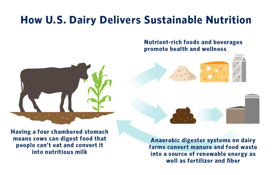 How U.S. Dairy Delivers Sustainable Nutrition