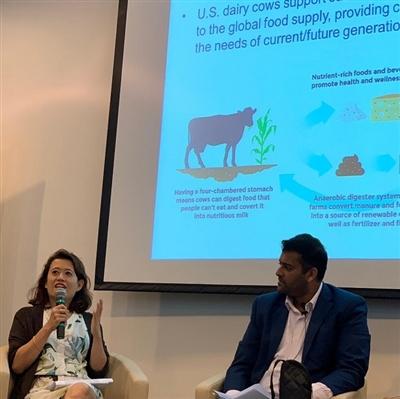 U S  Dairy in Action | ThinkUSAdairy by the U S  Dairy