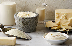 US Dairy Products