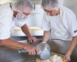 Stuyt Cheesemakers Image
